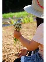 春全開♪うま味凝縮「春おススメ 炙り-地鶏のスキ焼き鍋」1万円ポッキリ