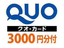 QUOカード3000円分付