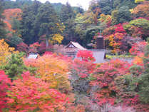 ★お部屋確約!1日2組★談山神社の紅葉ライトアップをお部屋からゆっくり鑑賞♪