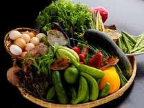 土佐黒毛和牛と山野菜のすき焼プラン