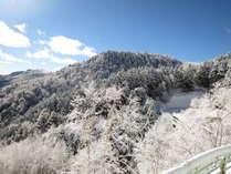 霧氷に包まれた ビーナスラインの風景