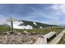 7月初旬の姥ヶ岳山頂