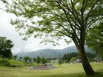 緑溢れる一里野高原に広がる芝生広場。広がる青空の下、さわやかな風が吹く公園は当館の目の前。