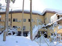 冬の中庭と外観