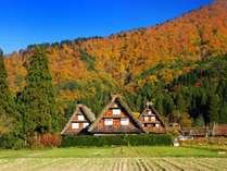 秋の世界遺産 白川郷