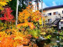 紅葉の庭園からのぞむ外観