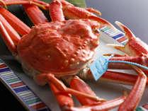 冬の味覚!タグ付ずわい蟹!