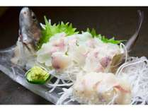 追加料理の一品  岩魚のお造り