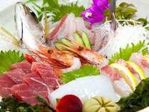 朝獲鮮魚のお造り