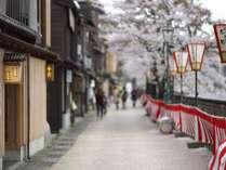 ≪浅の川・春≫