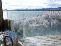 桜の時期の『貸切風呂』からの景色です。