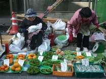 TVで話題沸騰!? 日本三大朝市♪ ■ 勝浦の朝市 ■ 新鮮野菜や鮮魚など盛り沢山! 無料送迎お買い物ツアー