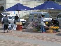 《GWおんじゅく青空市》 ゴールデンウィークは毎日開催♪ 地元の海産物を直売! 地産地消に出会う旅へ