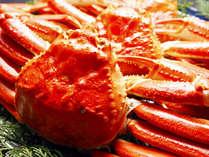 ■ふるさと割■【手頃に越前蟹】お手軽カニ会席☆食べ切りコース
