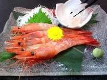 """【白エビ、甘エビ食べ比べ】""""富山湾の宝石""""白エビと甘海老のお刺身がついたWエビプラン!"""