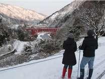 冬の宇奈月ウォーキング&『富山湾の宝石』白えびのお刺身&かき揚げ会席プラン