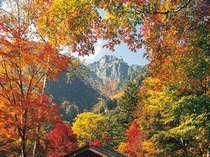 紅葉の合間から勇壮な錫杖岳を望む