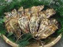 旬を迎えた牡蠣は美味しさ抜群!