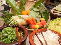 朝食 新鮮野菜
