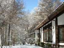 蓼科東急スキー場までは徒歩約5分♪ スキー場までのシャトルバスもあわせて運行しております。