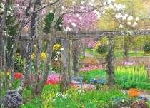 美しい花々に囲まれる春のバラクライングリッシュガーデン