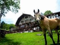 白樺湖 ホープロッヂ乗馬牧場