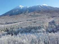 【展望ロビーからの眺め】冬の岩手山