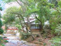 緑に包まれた、龍頭山荘川の音 外観