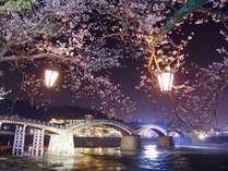 春の桜時分の錦帯橋。夜桜はまたいちだんと妖美な雰囲気をかもしだします☆