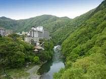 大川荘◆じゃらんnet