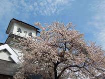 大川荘の周りでも桜がお楽しみいただけます