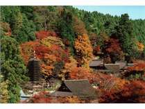 【11月お日にち限定】☆アクティブ派におすすめ☆秋の観光をぎりぎりまで愉しむ!朝食バイキング付プラン