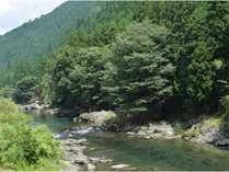 澄みきった川を見ていると日々の喧噪を忘れ心が洗われます。