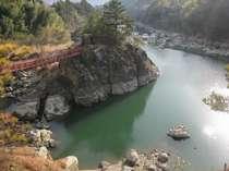 南国・香美の格安ホテル 物部川ほとりの温泉 夢の温泉