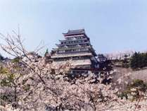 <熱海城>トリックアート博物館なども併設されており、春には桜の名所として人気です。