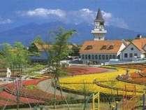 新緑が美しい季節到来!八ヶ岳に出かけよう花咲く高原で自然を満喫・5300円~気軽な素泊まり格安プラン