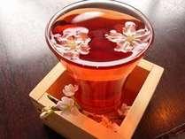 食卓をより華やかに彩る地酒「伊根満開」は、すっきりした味わいで女性にも人気