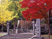 ○士津神社(猪苗代町)→当ホテルからお車で約5分 見頃:10月下旬~