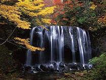 ○達沢不動滝(猪苗代町)→当ホテルからお車で約30~40分 見頃:10月下旬~