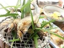 琵琶湖の鮎は小ぶりですが、骨もやわらかく、身もしっとり♪