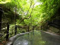 仙人露天岩風呂 全身を自然に包まれるような感覚に