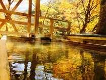渓谷美の宿 風景館