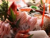 大杯に盛り込まれた磯魚 今日の魚は何かな!