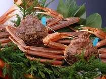 蟹の本場、石川県産ブランド蟹『加能ガニ』。ぎっしりと詰まった身は、豊潤な香りと旨味が楽しめます♪