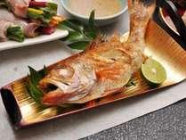 """【能登の味覚★グルメSP】 一度は食べたい! 幻の高級魚""""のどぐろ"""" ◆選べる調理法◆"""