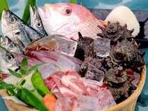 新鮮な魚介類をそのまま炭火焼で味わえる海鮮バーベキュー