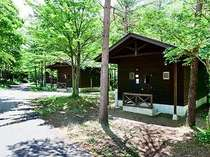 *[キャビン外観]緑が美しい林間に24棟のログハウス風キャビンが点在。