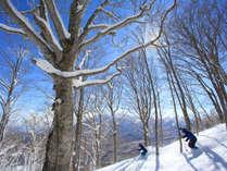 【リフト5時間券】当館より車で約10分★八幡平リゾート・下倉スキー場でスキー&スノボを満喫