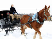 【冬季限定】まるで英国!?アンティーク調の馬車そりで雪原巡るプレミアムツアー/キャビン利用2食付