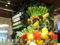 【エルバージュ】旬の野菜盛りだくさん!ベジタブルガーデン◆
